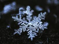 snowflake-3317-423a9ae38f3342e0c130c5473fee6d3c@1x