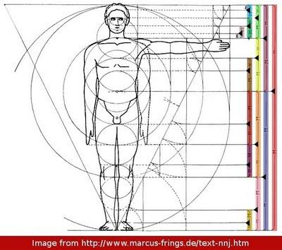 proportion.jpg