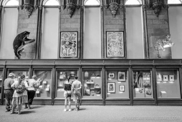 castle-exhibition